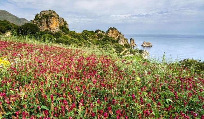 spring - best time to visit sicily