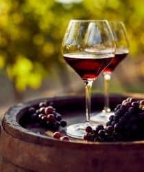 chianti wine tuscany